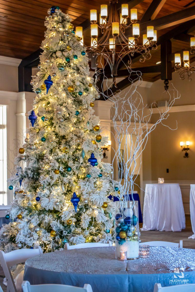 Christmas-Tree-Rentals-5
