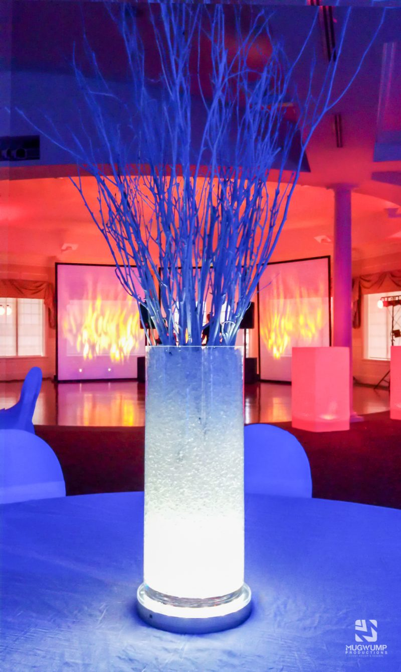 Fire-and-Ice-Themed-Event-Decor