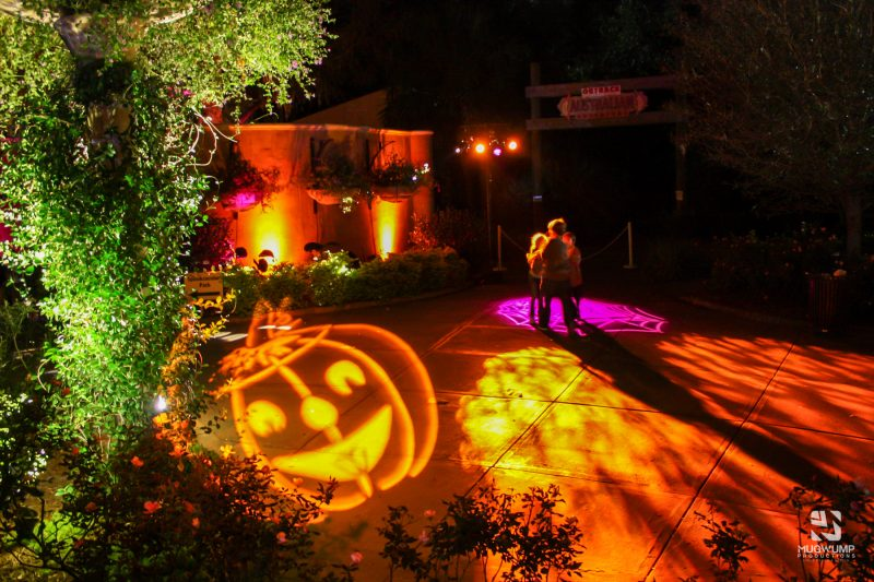 Halloween-Themed-Event-Decor-2