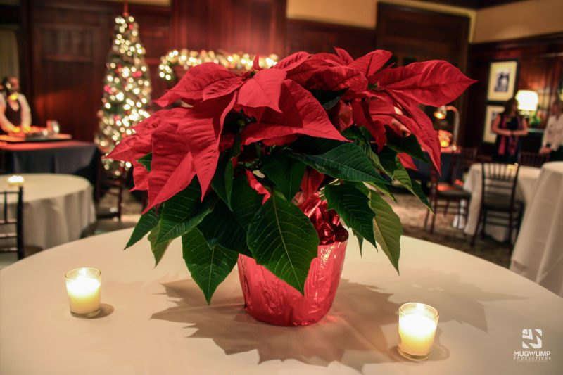 Holiday-Party-Centerpieces-9