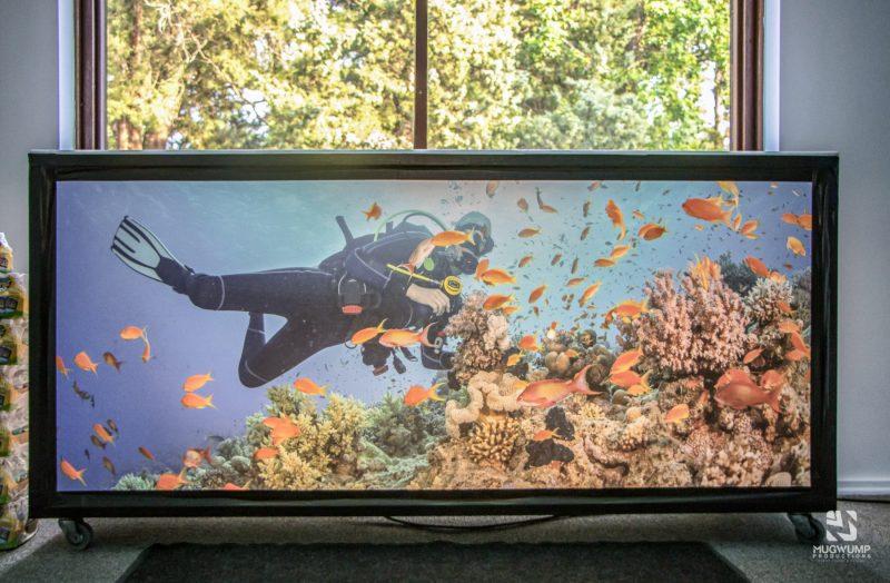 Underwater-Themed-Event-Decor-21 (1)