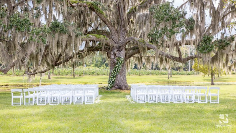 Pacheco-Bailey Wedding_Congaree and Penn_21-1020-15